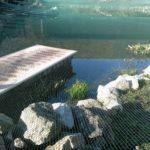 Laubnetz Laubschutznetz Teich anlegen
